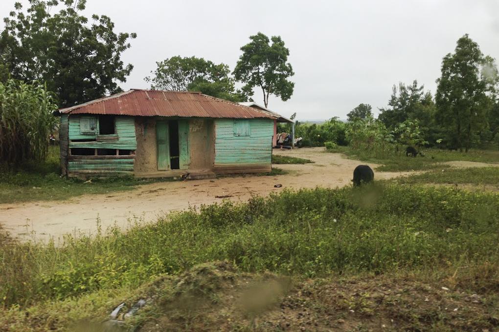 Community Spotlight Wednesday Bohoc, Haiti