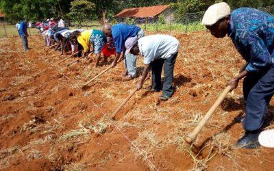 Foundations for Farming has spiritual impact in Tumutumu!