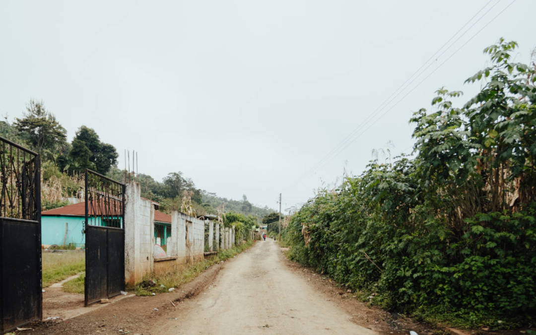 Las Lomas Community Update