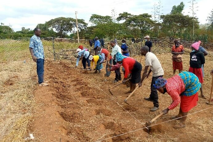 Sustainable solutions for poverty farm demo plot